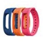EVOLVEO FitBand B2, náhradní barevné pásky, 1x modrá, 1x oranžová a 1x růžová barva, FTD-B2-RS2