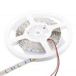 Whitenergy WE LED páska 5m SMD50 30ks/7.2W/m 10mm studená, 06730