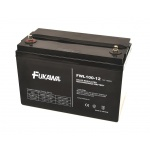 Fiamm Akumulátor FUKAWA FWL100-12 (12V 100Ah živ. 10let), 11512