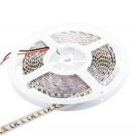 Whitenergy WE LED páska 5m SMD35 120ks/9.6W/m 8mm studená, 06656